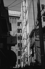 Tenroku-01
