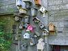 A few of the bird houses at Ellis Bird Farm