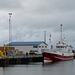 im Hafen von Ólafsvík (© Buelipix)