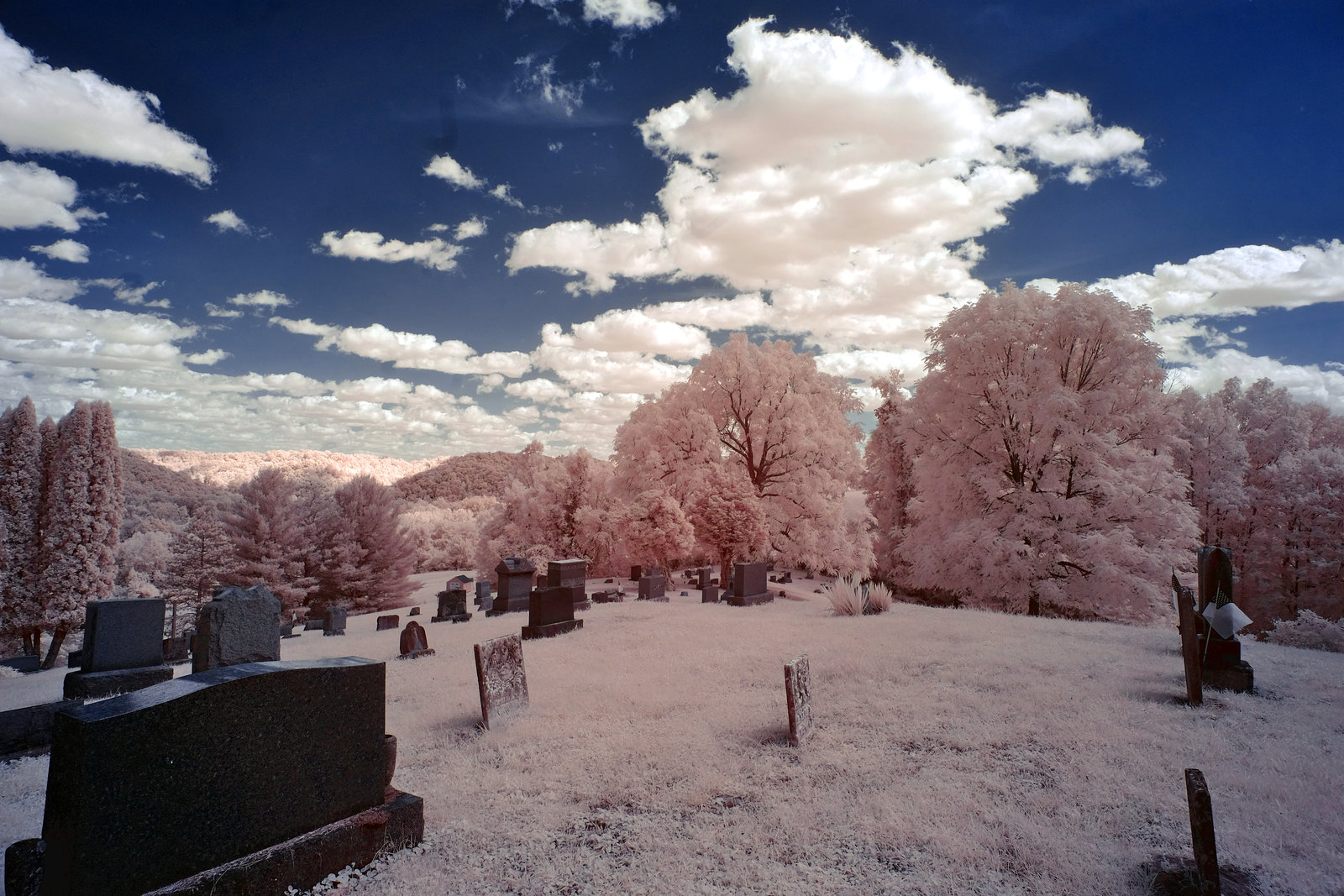 For some reason, it seems better in infrared
