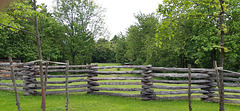 Happy Fence Friday to All of You