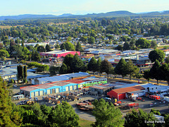 Tokoroa From The Lookout.