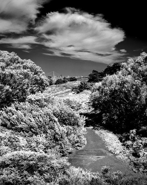 Parkland Trail