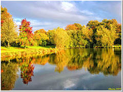 Colorful day at the village pond