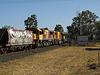 LockyerSiding 0917 P9201147