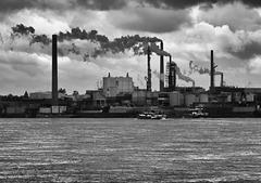 Sachtleben, Blick vom Rhein nach SSW