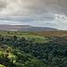 Hillside View 01