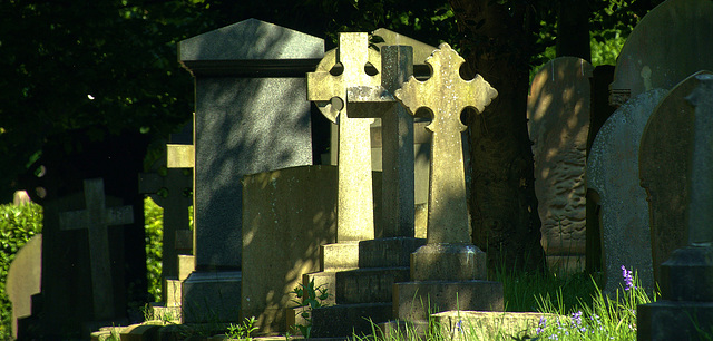 Light And Shadows At Preston Cemetery, North Tyneside