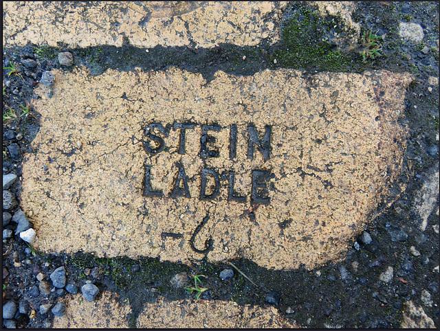 Stein Ladle