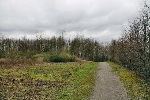 Auf dem Plateau der Halde Tockhausen (Lünen-Brambauer) / 16.03.2019