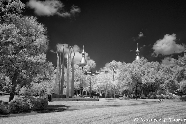 University of Tampa Infrared 006