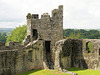 Keep at Dinefwr Castle