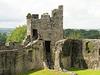 Keep at Dinefwr Castle
