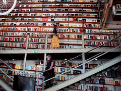 What is a bookshelves other than a treasure chest  for a curious mind?