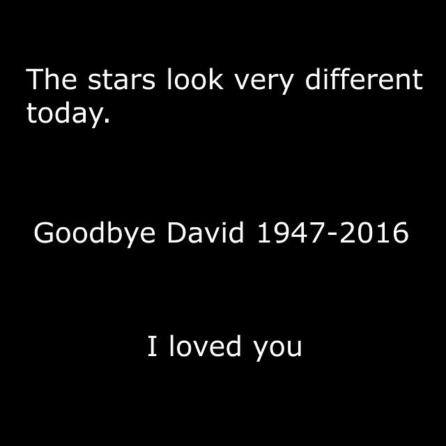 Goodbye David - 11 January 2016