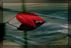 kleine Herbstwelt 3