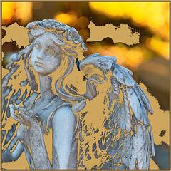 Gelber Engel .... ♫ ♪ ♪ ♫