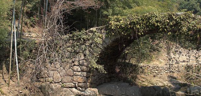 Any Trolls Under That Bridge?