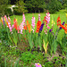 Blütentraum - florojrevo