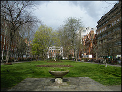 Queen Square in March