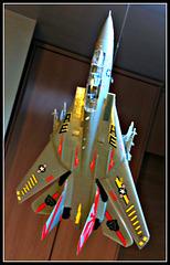 F-114 Tomcat, 5