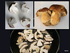 If you go down to the woods today, you're sure of a big surprise...Boletes!