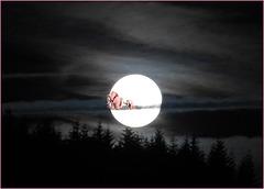 Certaines nuits sont plus magiques que d'autres...