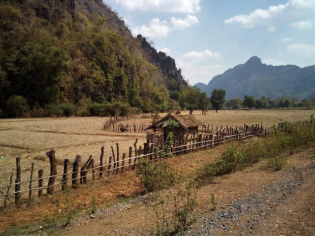 La campagne laotienne sur la route 137