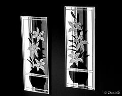 Miroirs d'entrée...