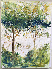 Aquarelle : travail sur le thème de l'arbre