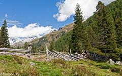 Rustikaler Zaun - Rustic fence (PiP)