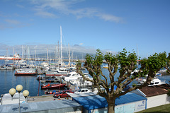 Azores, The Island of Faial, The Port of Horta