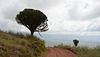 The Road along the Ridge of the Ngorongoro Crater