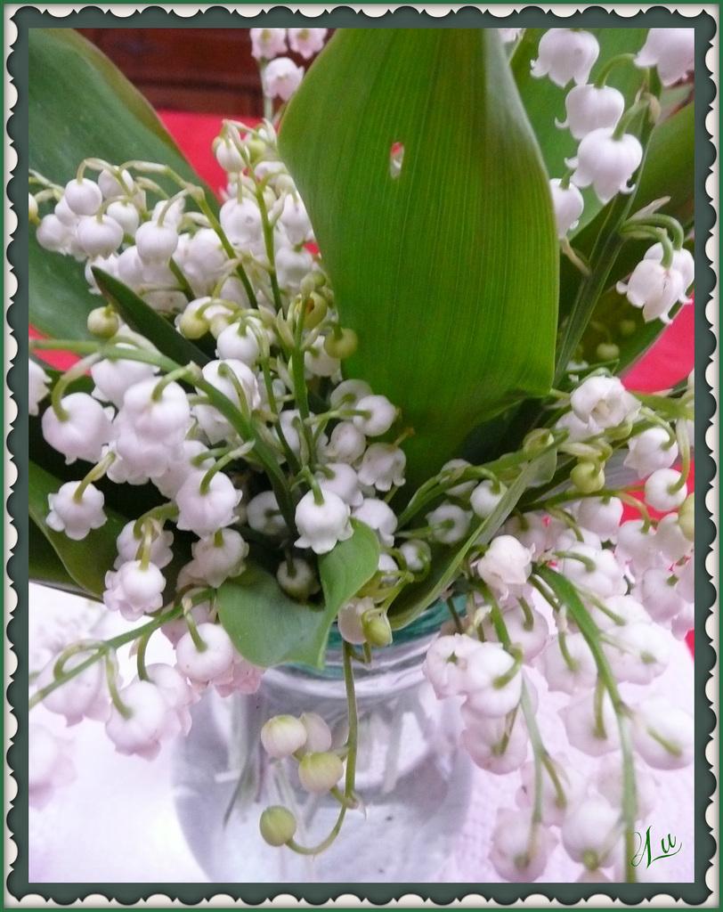 ** Joyeux 1er Mai à vous tous **