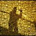 Mr Nobody's golden moment