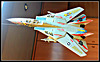 F-114 Tomcat, 6