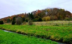 DE - Weilerswist - Autumn along the Swist