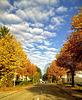 Autumn sky above my street