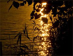 "Havel - Berlin - Summertime - ""Set"""