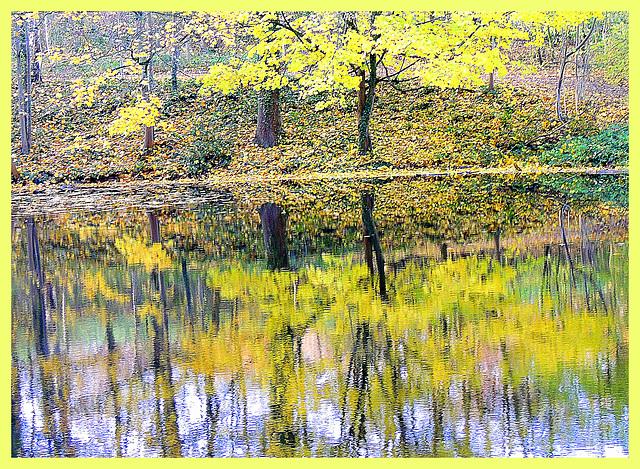 Autumn   Double