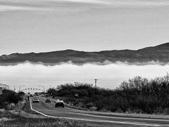 Fog on the San Pedro River