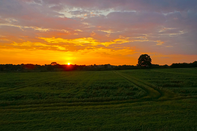 Sunset in Gnosall