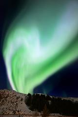 Lofoten, Leknes, Northern lights, a last dance before vanishing
