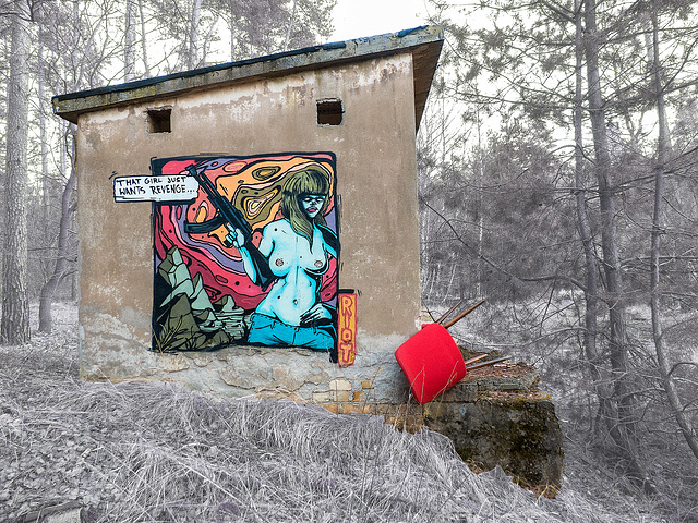 12/50 - Im Wald und auf der Heide ... ♫ ♪ ♪ ♫