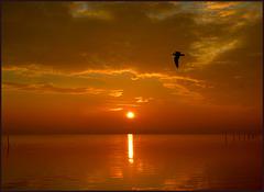 Es tagt der Sonne Morgenstrahl