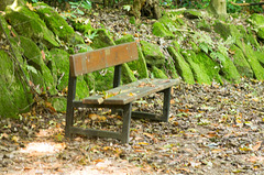 A bench less used..