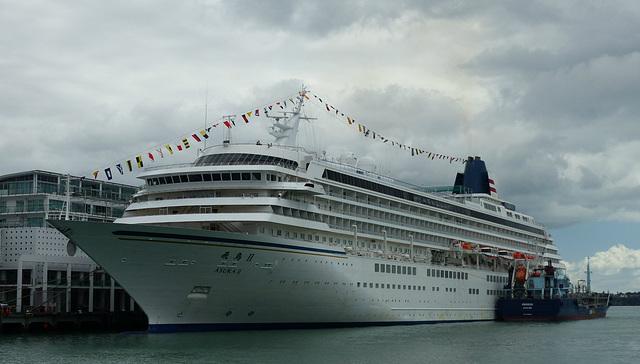 Asuka II at Auckland (2) - 20 February 2015