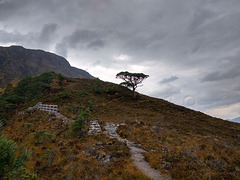 Mountain Trail, Beinn Eighe National Nature Reserve