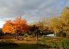 Le romantisme de l'automne