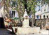 Saint-Martin-de-Brômes (04) 19 juin 2014.